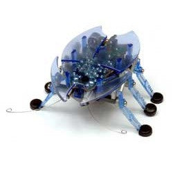Hexbug Beetle - Toybox Toy Jungle