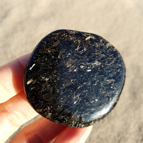 Nuummite Starry Night Palm Stone #18176