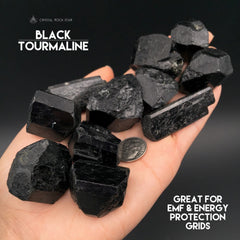 Black Tourmaline Terminated Crystals