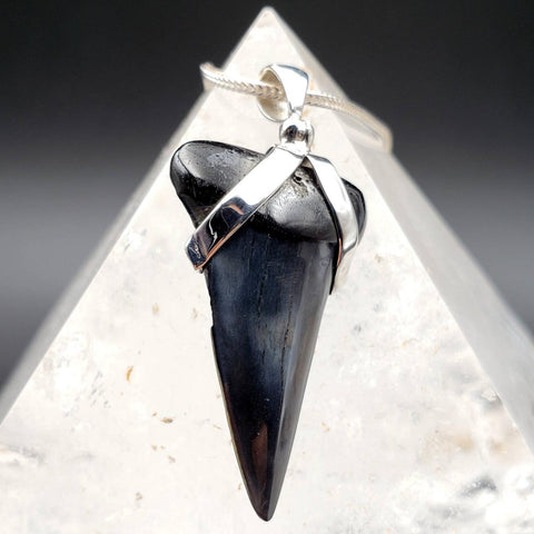 Megalodon Blue Gray Shark Tooth Pendant
