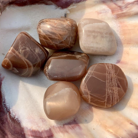 Chai Latte Peach Moonstone Tumbled Stone
