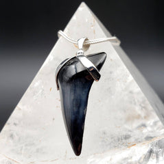 Megalodon Shark Tooth Black & Grey Pendant