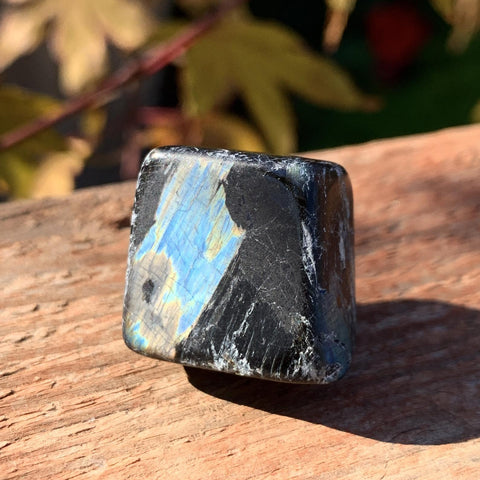 Nuummite Blue Flash Small Greenland Crystal