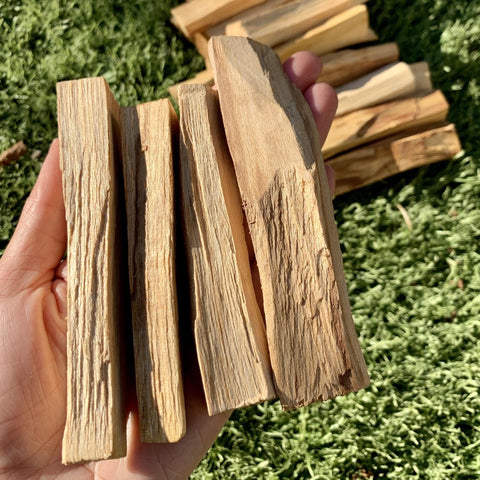 Palo Santo Incense - Bundle of 3 Sticks