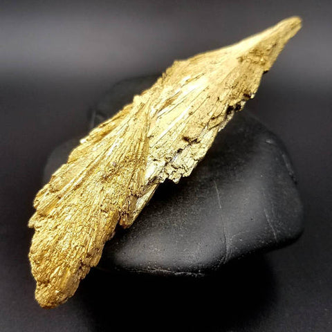 Gold Kyanite Dolphin Formation Double Crystal