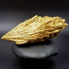 Mother and Child Gold Kyanite Large Wing 4""