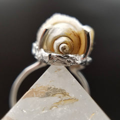 Crystal Seashell Spiralite Ring Size 9 / 9.5