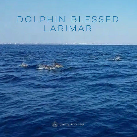 Larimar Baby Dolphin Blessed Sphere