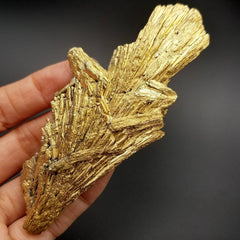 Gold Black Kyanite Cluster 4""