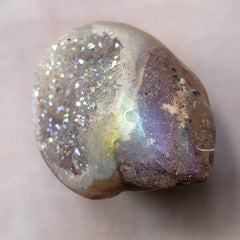 Spiralite Rainbow Crystal Seashell