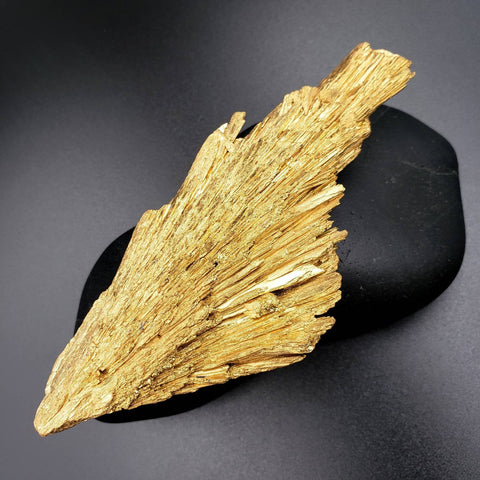 Gold Black Kyanite Wing 4.9""