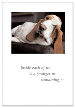 Sleepy Hound Card