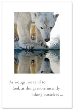 Polar Bear Reflection Card