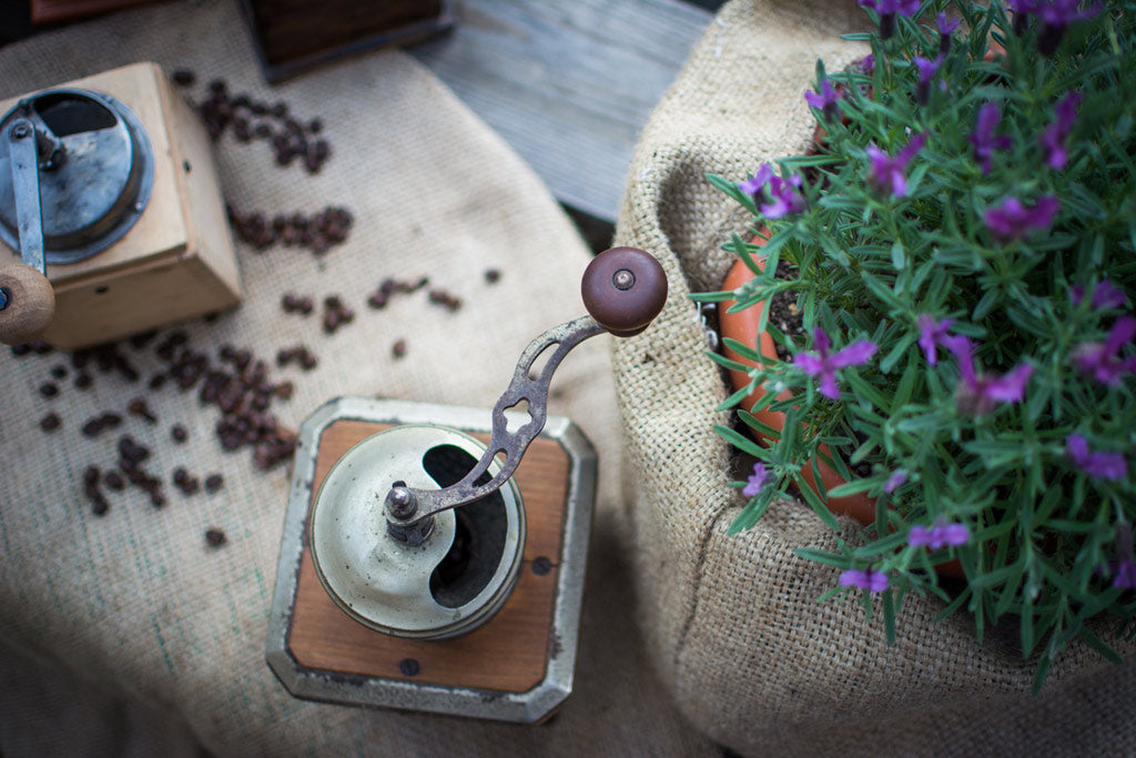 Brown and gray coffee grinder
