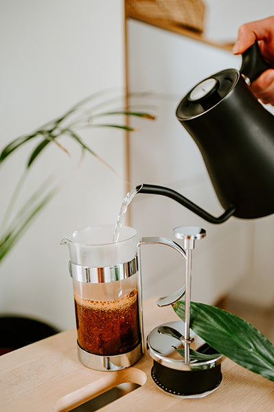 Person brewing coffee in french press