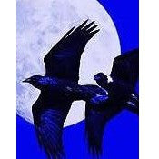Ravens Blue Magic