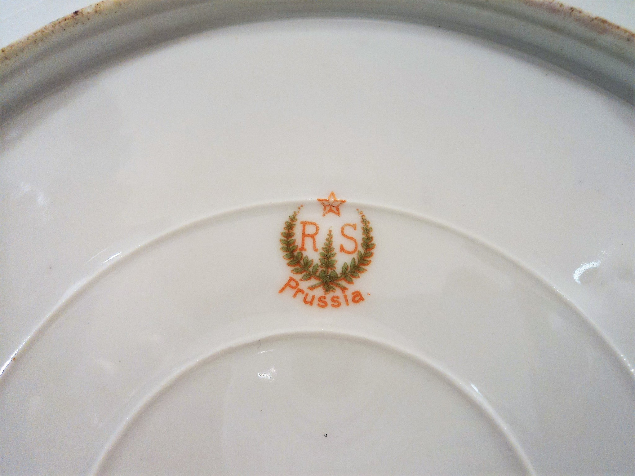 RS Prussia Pink Roses and Stenciled Foliage Plate