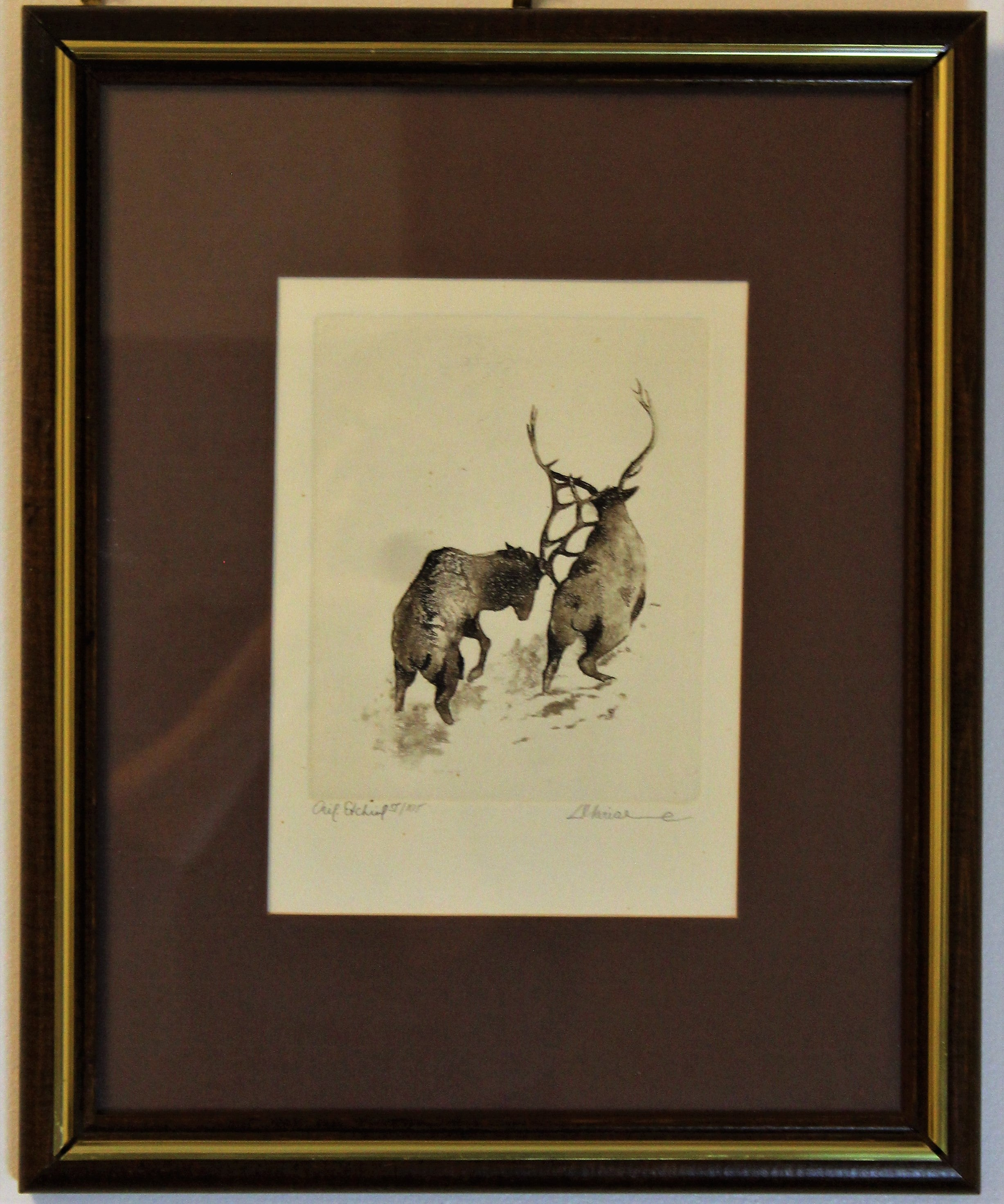 Limited Edition Etching of Elks
