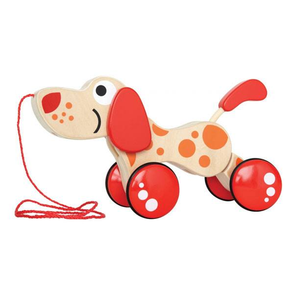 Hape Walk Along Puppy | Koop.co.nz