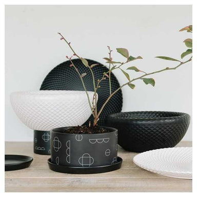 George & Co Kanso Planter - Small White | Koop.co.nz