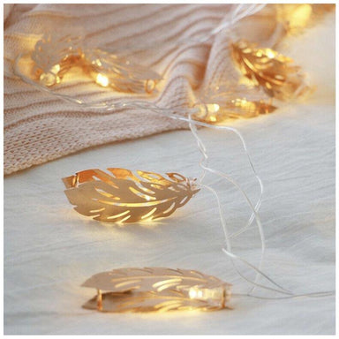 Stellar Haus Champagne Feather LED Fairy Lights (2m) | Koop.co.nz