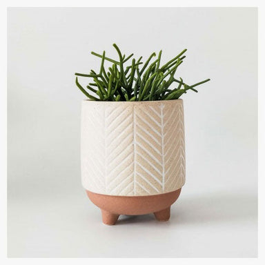 Urban Products Kyra Planter With Legs - Terracotta (12cm) | Koop.co.nz