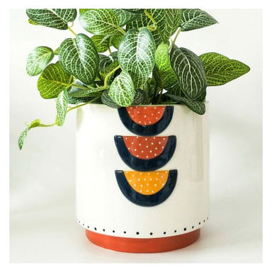 Urban Products Woodstock Rainbow Geo Planter - Blue/Terracotta | Koop.co.nz