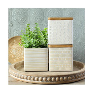 Ladelle Grown Canister Set – White (3pc) | Koop.co.nz