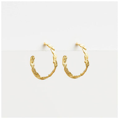 Stella & Gemma Kiara Gold Hoop Earrings | Koop.co.nz
