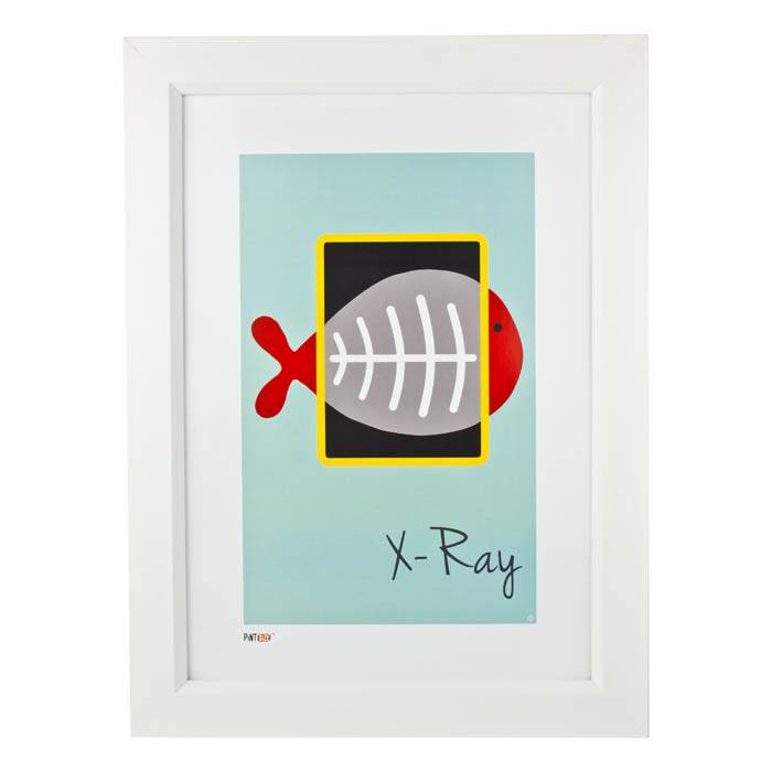 Pint Size X-Ray Print (A3) | Koop.co.nz