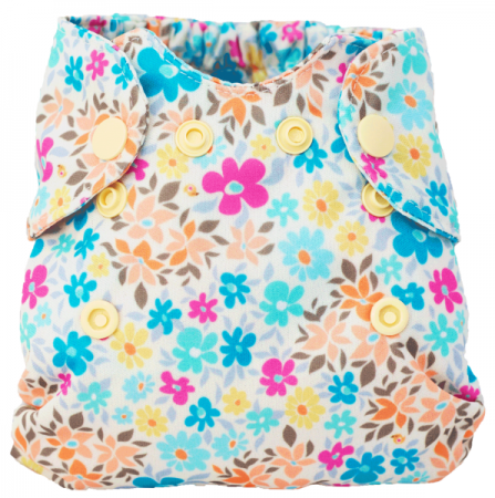 Smart Bottoms Born Smart Cloth Diaper