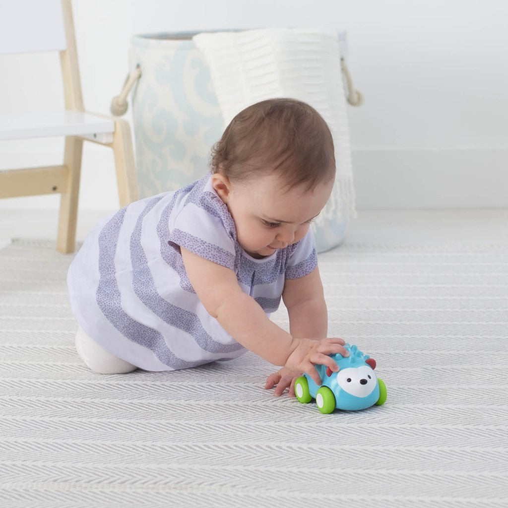 Skip Hop Explore & More Pull & Go Car