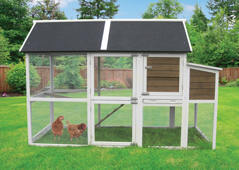 Chicken Coops Feathers And Innovation Pet