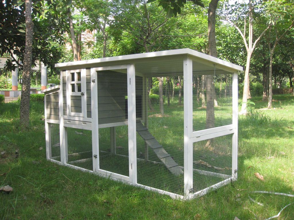 Coops FeathersTM Hen Coop 78l X 30w