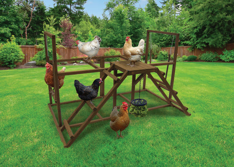 Coops & Feathers®  Chicken Activity Center - Large
