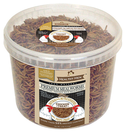 Premium Mealworms 4lb Bucket  (SKU 650-39)