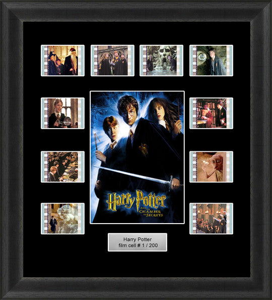 Chamber Of Secrets film cells