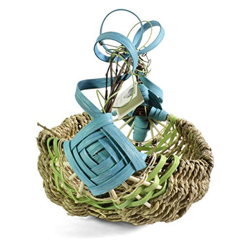 Designer Baskets by Derek Small Grapevine Handle Basket, Aqua/Lime - The Barrington Garage