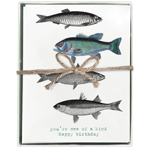 Montgomery Street Fish Recycled Birthday Cards Boxed Set Of 8 The