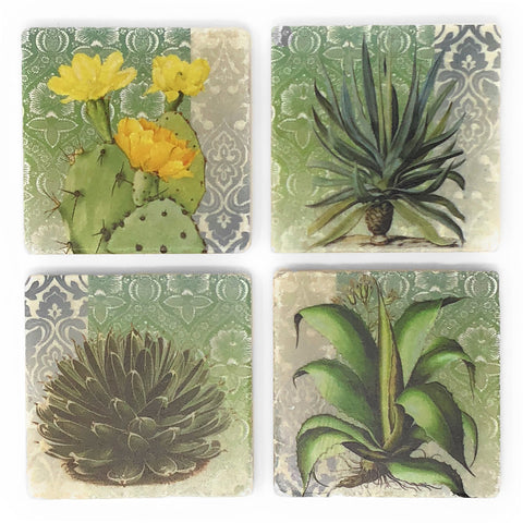 Studio Vertu Cacti and Succulents Marble Coasters, Set of 4