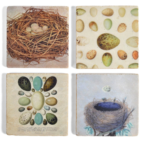Studio Vertu Eggs and Bird Nests Tumbled Marble Coasters, Set of 4