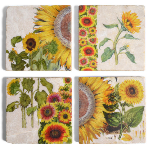 Studio Vertu Sunflower Botanical Marble Coasters, Set of 4