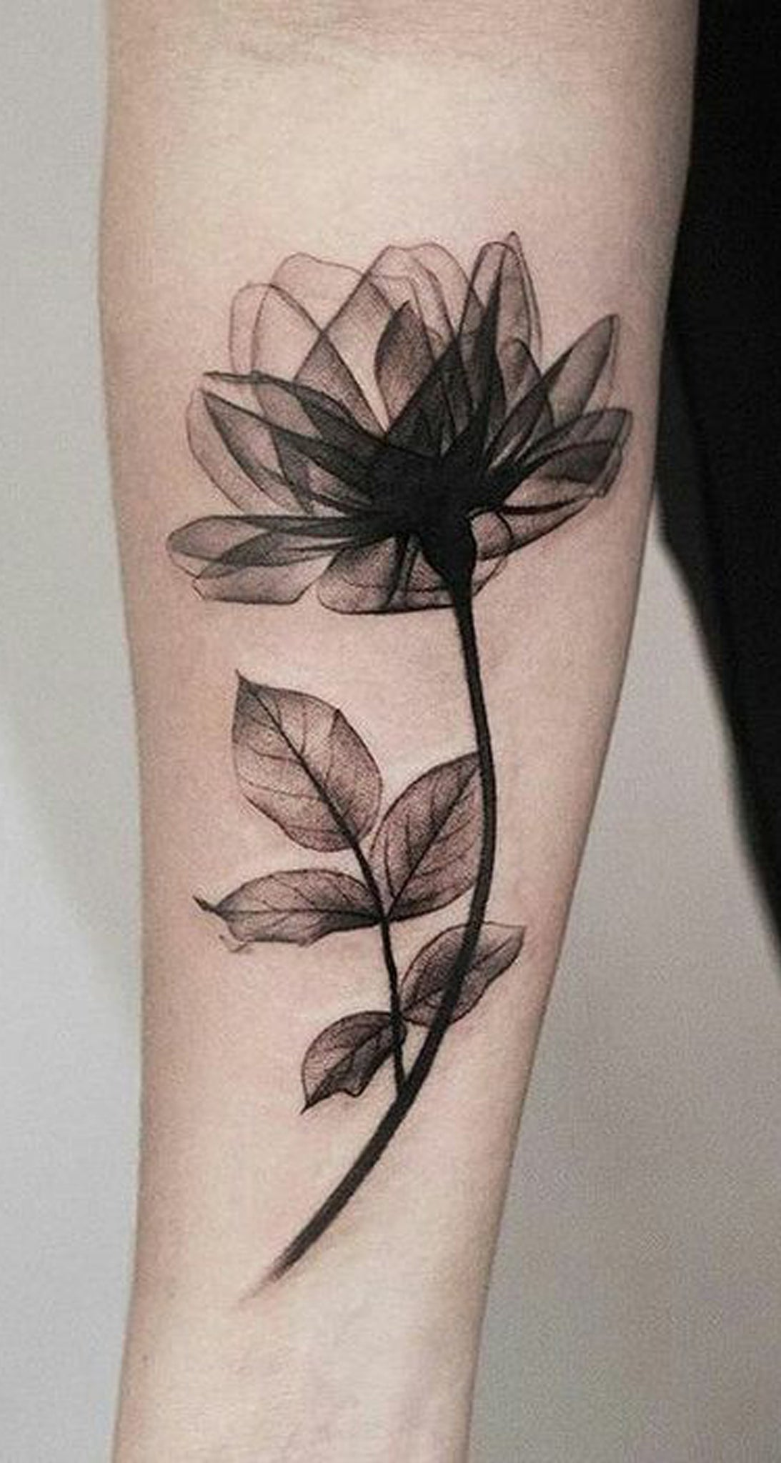 Flower Tattoo Designs For Women Unique: 100+ Of Most Beautiful Floral Tattoos Ideas