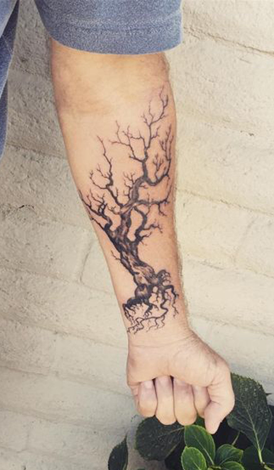 50 beautiful tree tattoo ideas for women mybodiart. Black Bedroom Furniture Sets. Home Design Ideas