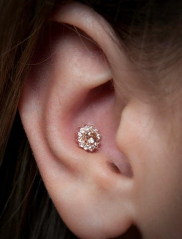 Conch Piercing Jewelry at MyBodiArt