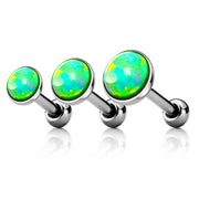 Lime Green Opal Ear Piercing Stud in Silver 16G for Cartilage, Helix Tragus Earring Stud - www.MyBodiArt.com