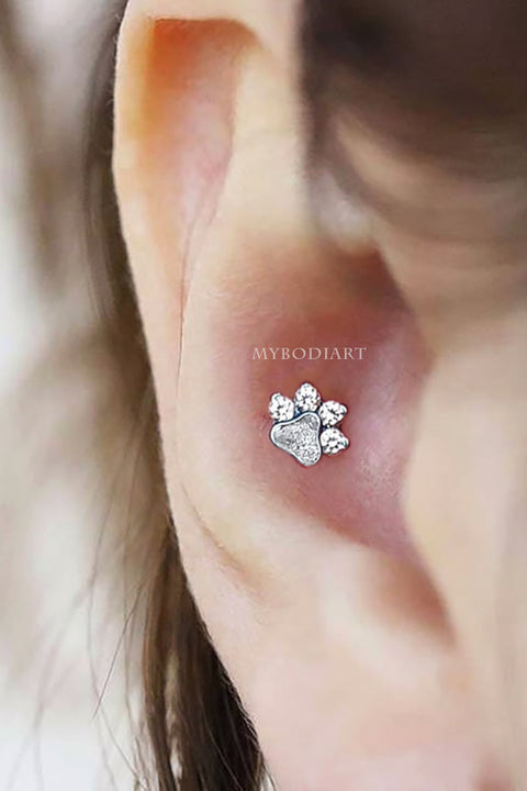 Cute & Simple Dog Paw Conch Ear Piercing Jewelry Ideas for Women -  lindas ideas para perforar orejas - www.MyBodiArt.com #earrings