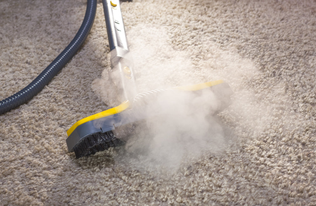 Understanding Why Steam Cleaning Is the Best Option for Carpet Cleaning
