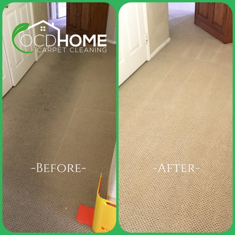 carpet cleaning orange county before and after