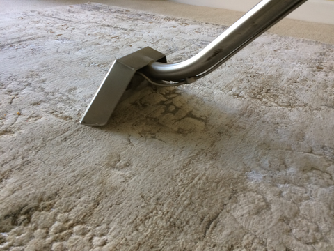 a carpet cleaning wand cleaning a rug